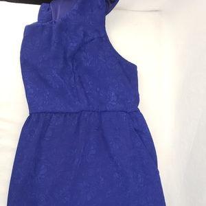 Womens Torrid Plus Size Lace Dress